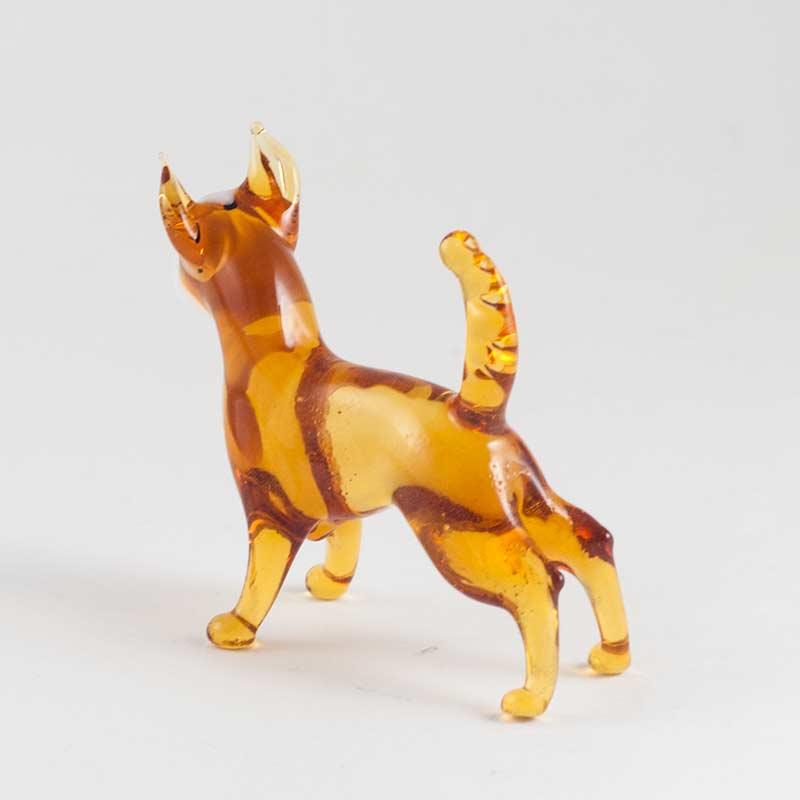Chihuahua Doggy