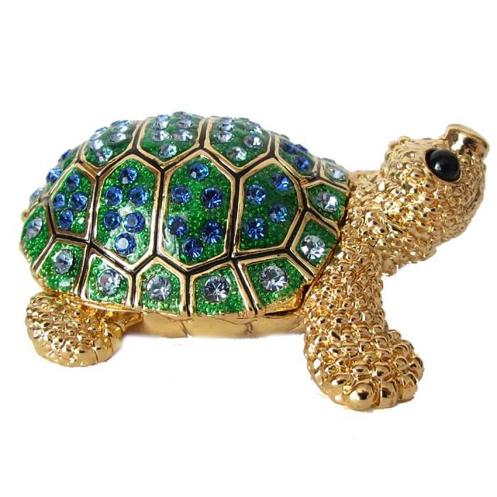 Jewelry Box Turtle