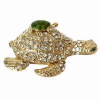 Jewelry Box Turtle